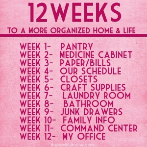 Week-2B12-2BOrganization-2BList